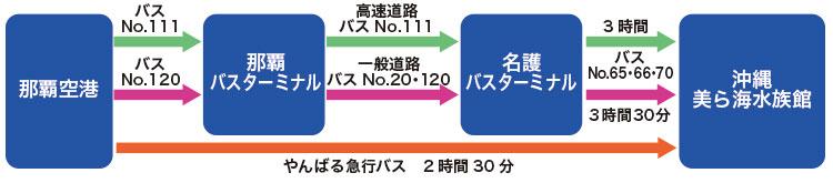 沖縄美ら海水族館行きバス