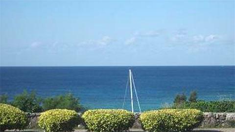 Gala青い海 水平線